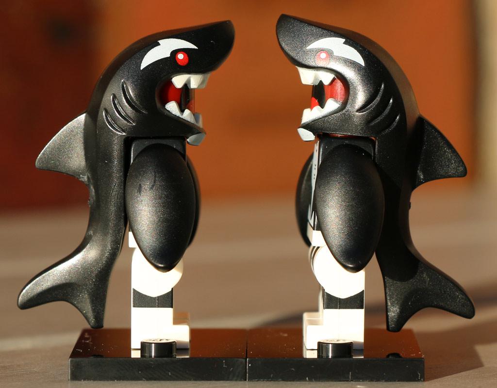 Die beiden Kollegen haben sich zum Fressen gern! | © Andres Lehmann / zusammengebaut.com