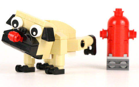 lego-creator-mops-30542-polybag-2018-zusammengebaut-andres-lehmann zusammengebaut.com