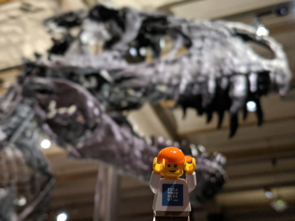 lego-minifiguren-naturkundemuseum-t-rex-berlin-2019-zusammengebaut-andres-lehmann zusammengebaut.com