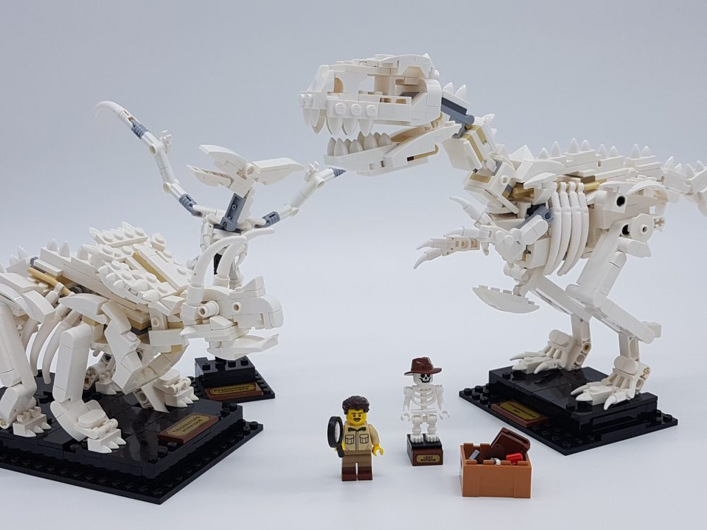 lego-ideas-21320-dinosaur-fossils-2019-review-cover zusammengebaut.com