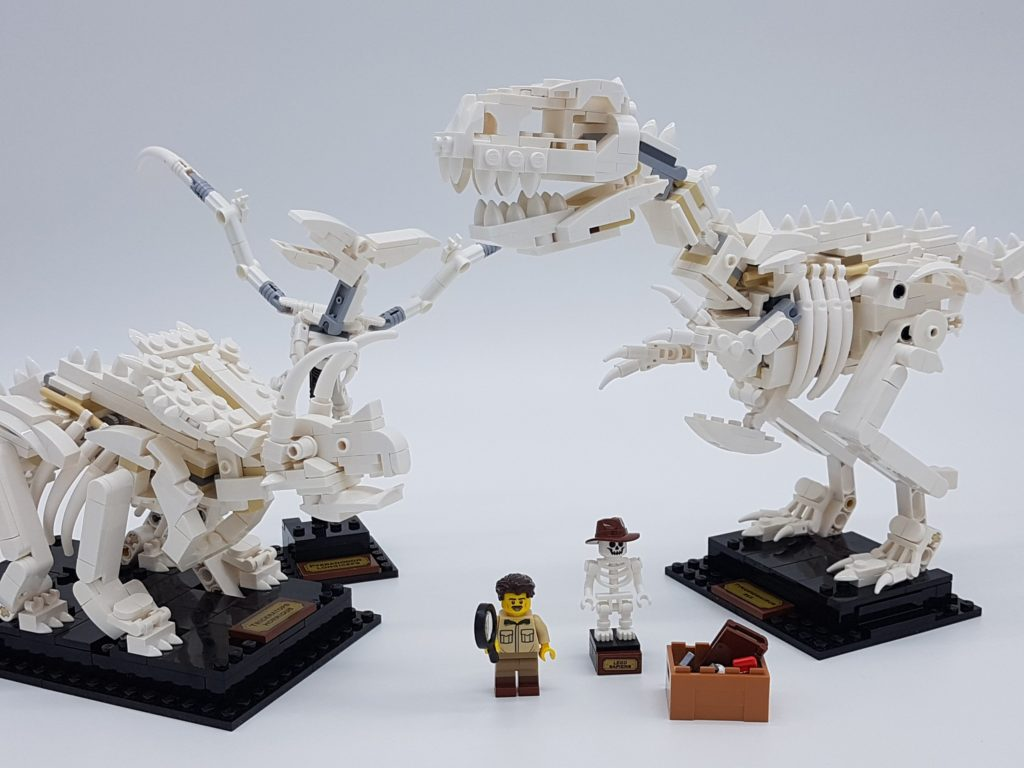 lego-ideas-21320-dinosaur-fossils-2019-review-cover zusammengebaut.com