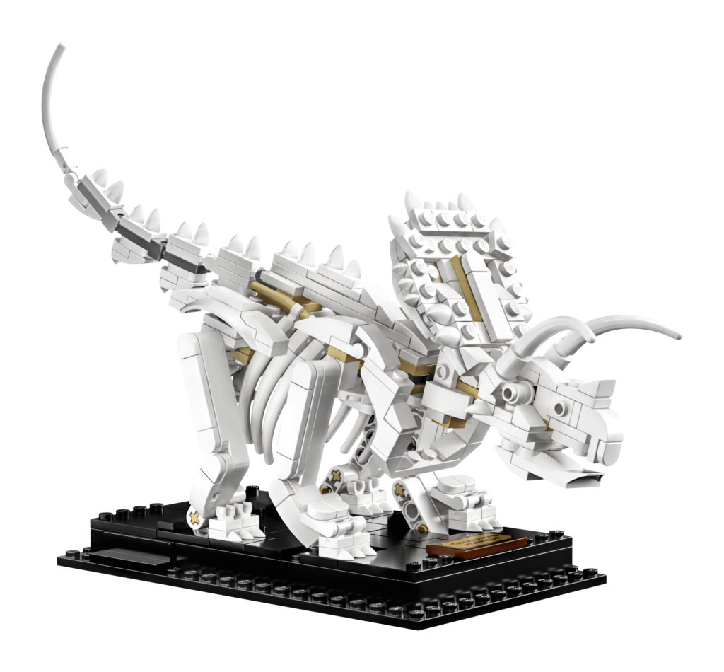 lego-ideas-21320-dinosaur-fossils-2019-triceratops-02 zusammengebaut.com
