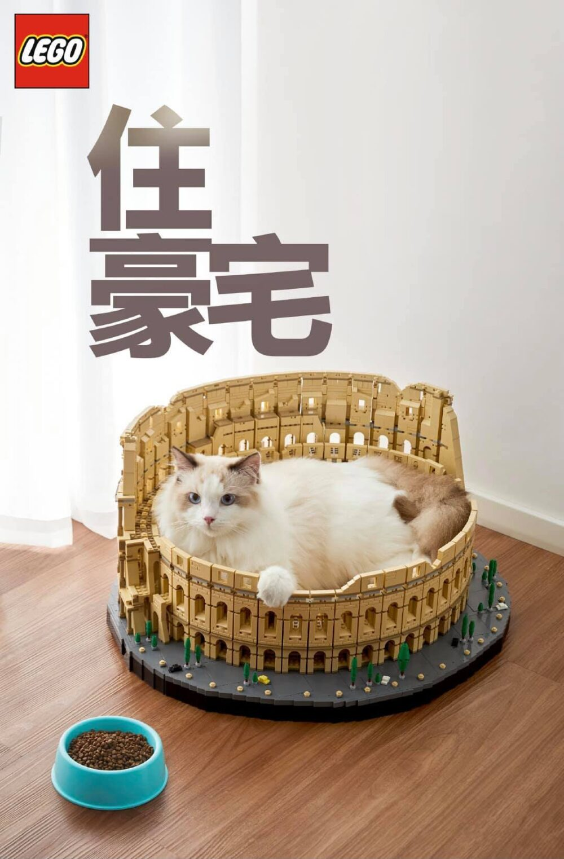 LEGO 10276 Kolosseum als Schlafplatz für die Katze