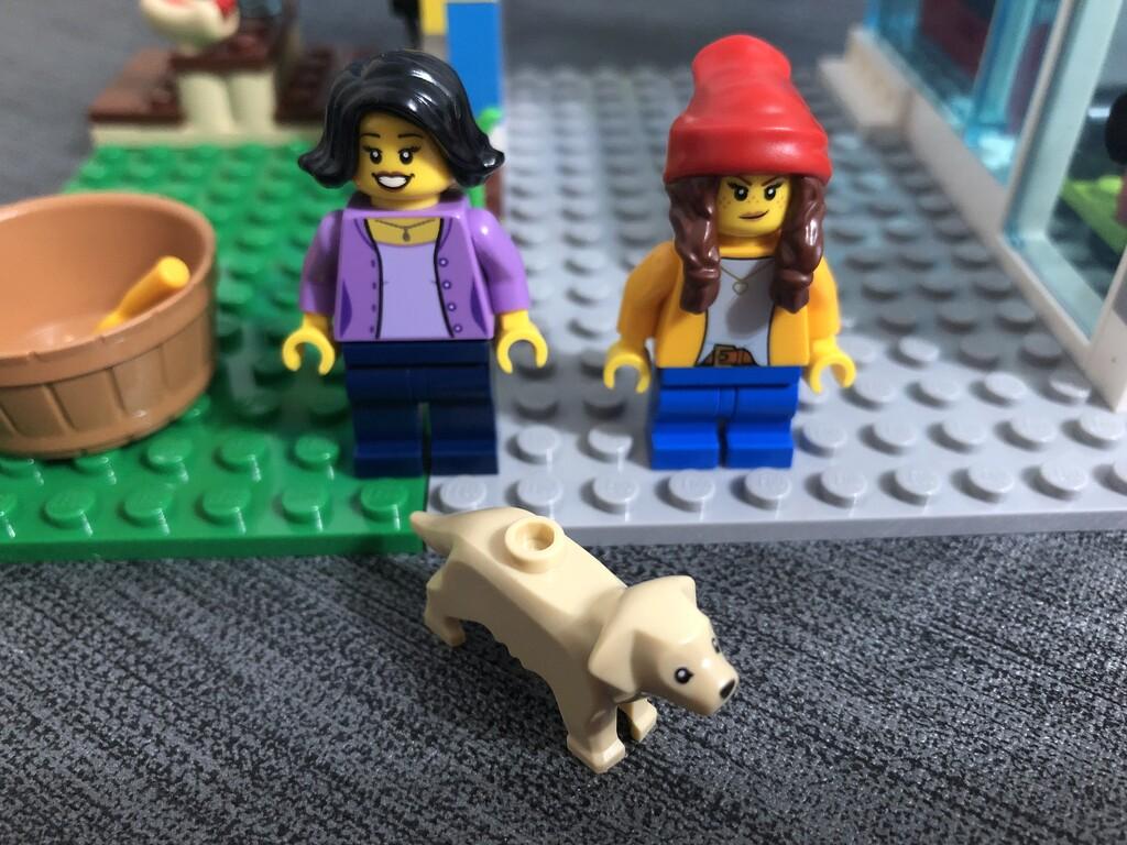 Wanne für den Hund, Mutter, Tochter und ihr Labrador